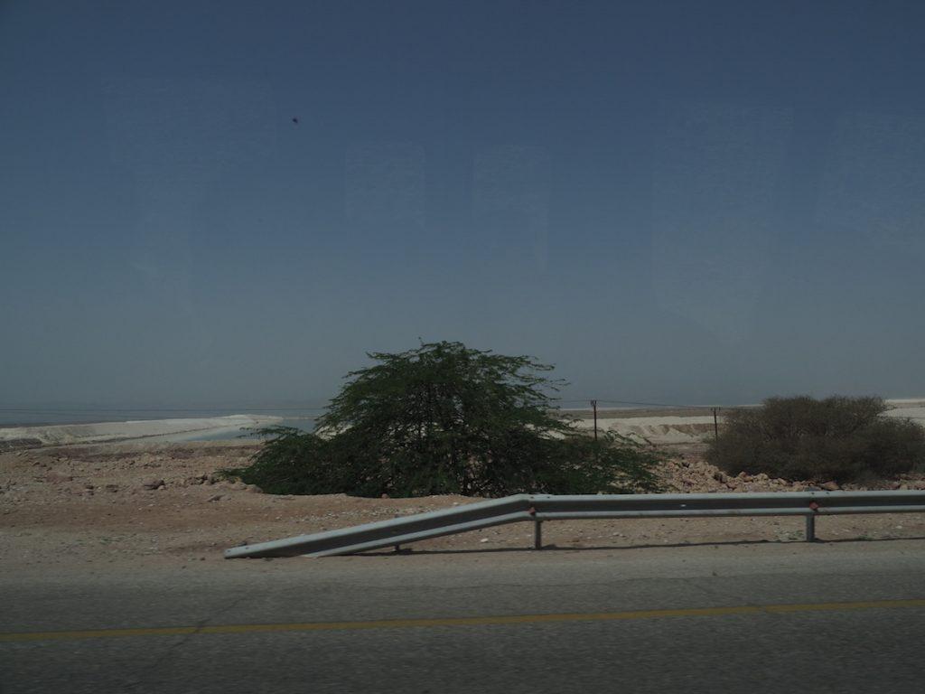 Salt Bins - Dead Sea